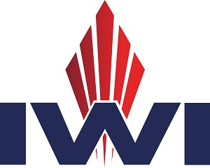 IWI Israel Weapon Industries
